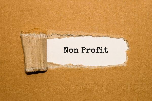 Volunteer Abroad Alliance - non profit