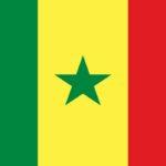 volunteer abroad alliance - senegal - warang - flag